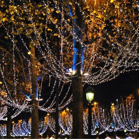 Experience the magic of Christmas in Paris